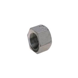 Inox 6-kutni čepovi (kape) sa unutarnjim navojem FF463